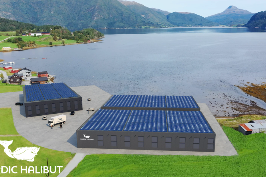 Design of the new land-based production unit at Torjulvågen